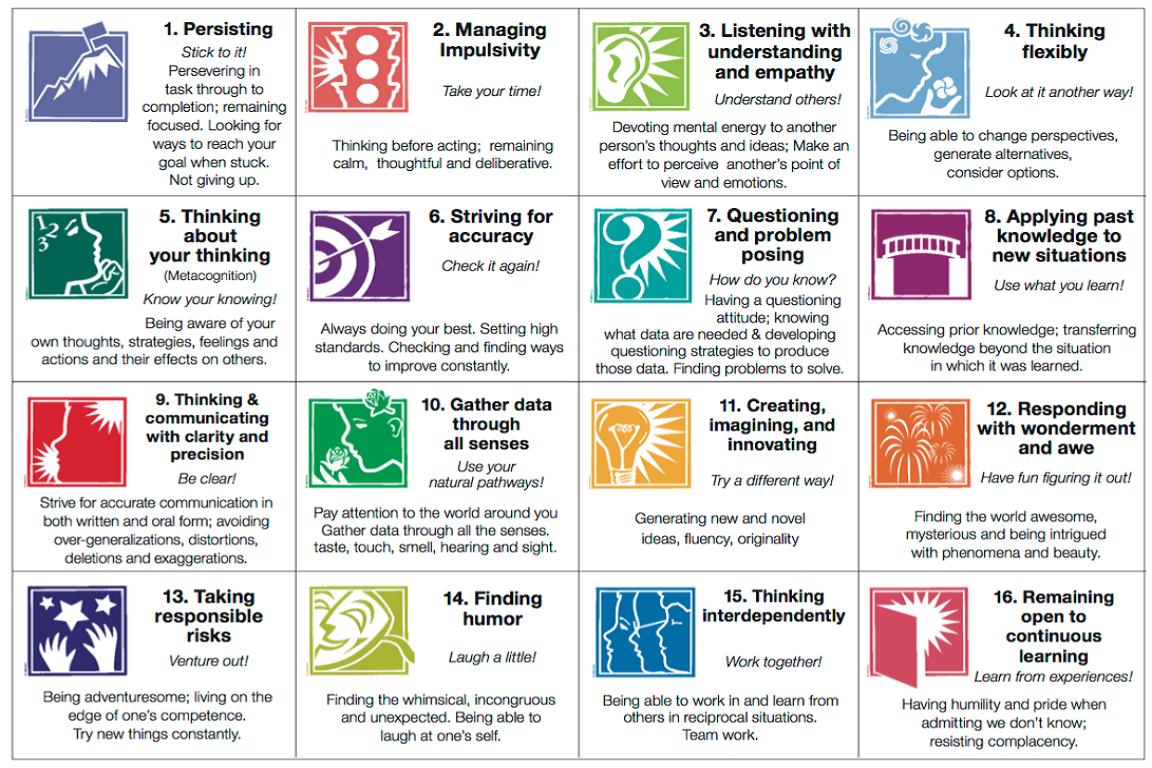 «Οι 16 Συνήθειες του Νου»: Ενίσχυση της δημιουργικής και κριτικής σκέψης